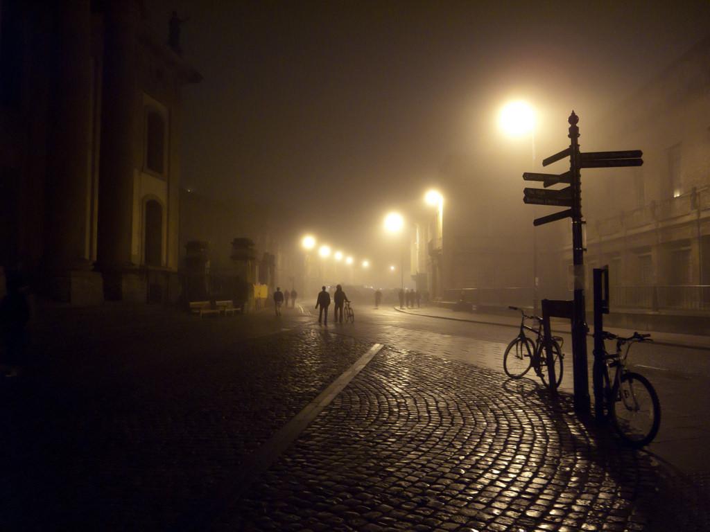 term-fog1