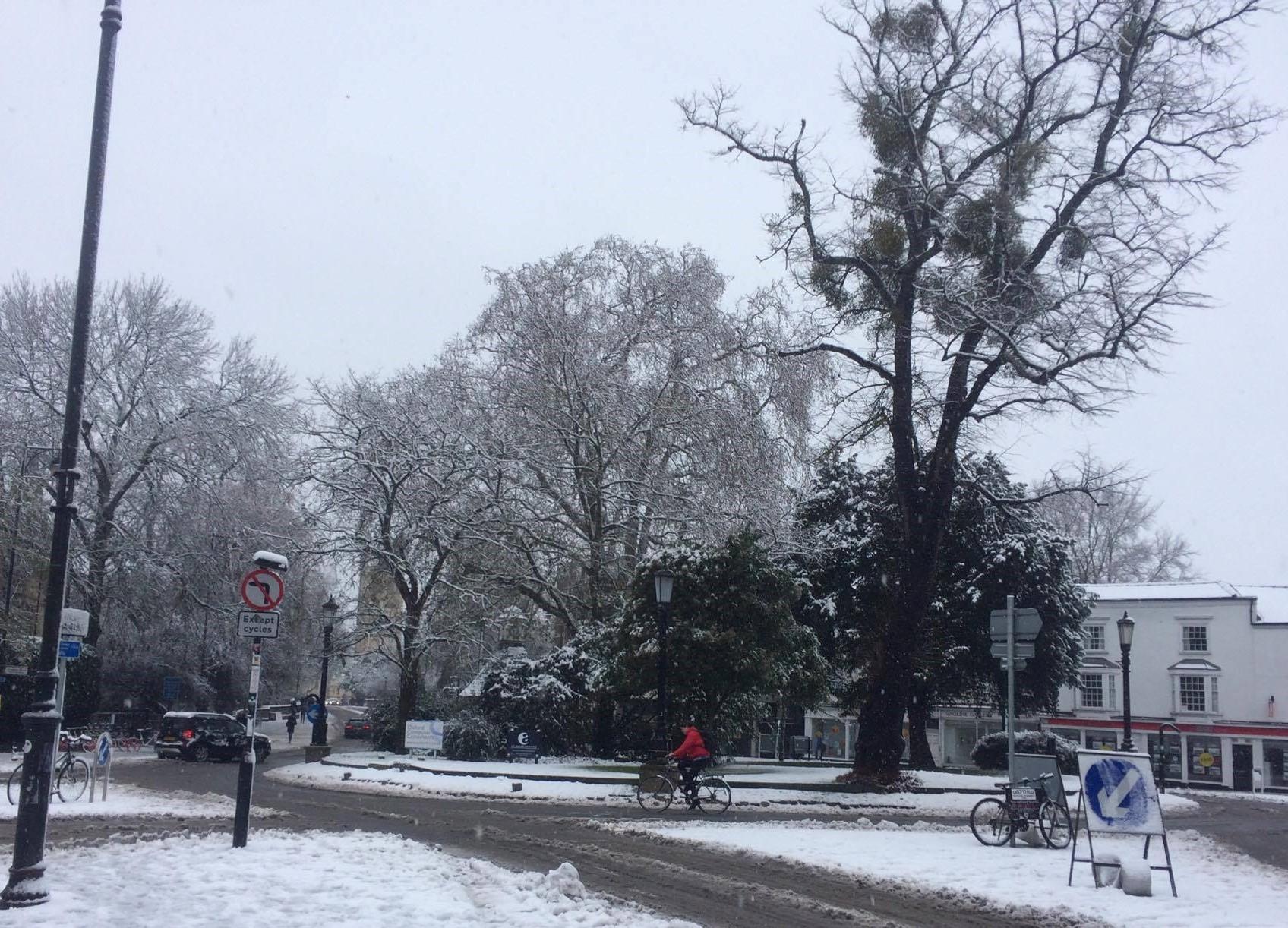 Tess - roundabout (cropped)